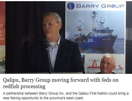 Fish-NL Harvesters Slams Barry Groups Redfish Plans with Qalipu First Nation, Wants Undivided Quota